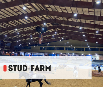 【Project】240W Equestrian lighting